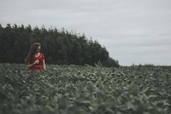 #27 (Lucian Renan) Tags: girl green grass woman inspiration fineart fear fragil frail reddress portraits photography paisagens places emotive