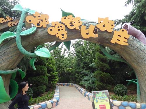 Taishan Fantawild Adventure/泰山方特欢乐世界