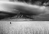 "Hacia el ojo de la tormenta. / To the eye of the storm. (Oscar Martín Antón) Tags: light españa cloud mountain storm blancoynegro luz rain lluvia spain passion tormenta infrared montaña nube symbolism castilla simbolismo palencia whiteandblack pasión infrarrojo trigal cerrato field"" ""wheat"