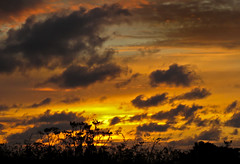 Sunset 1 - 89 of 215 (linlaw39) Tags: sunset sky orange nature weather silhouette yellow clouds scotland aberdeenshire fraserburgh northeastcoast lindal 2015 project215 canonpowershotsx60hs july2015 215project 26072015 26thjuly15 image89of215