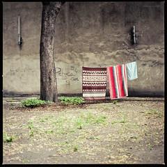 """""""Doch auf die Dauer konnten mir alle diese Momente nicht den verlorenen Ort ersetzen"""" (Konrad Winkler) Tags: 6x6 polen wäsche handtücher hinterhof poznań posen mittelformat hasselblad503cx kodakektar100 epsonv800 zitatpeterhandke"""