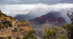 IMG_6718-23 (ulrichcziollek) Tags: grand canyon