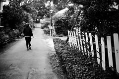 中央大學_36 (Taiwan's Riccardo) Tags: leica bw 35mm taiwan rangefinder negative fujifilm fixed m5 f35 中壢 acros100 2015 桃園縣 中央大學 leicalens 135film summaronm