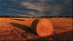 Sunlight and Shadow [Explored 09/08/2015] (Nickerzzzzz - Thanks for stopping by :)) Tags: ©nickudy sunset landscape sky photograph clouds sunlite shadow hay bale straw field harvest wheat westonzoyland explored