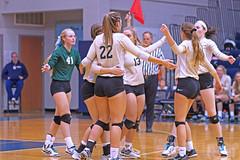 IMG_8317 (SJH Foto) Tags: girls volleyball high school york delone catholic team teen teenager huddle hug
