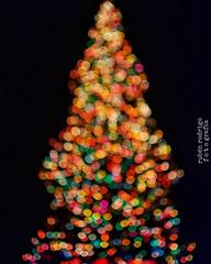 Happy Xmas (War is over) (Mister Blur) Tags: happyholidays happyxmas warisover blur christmas tree bokeh lights joyeuxnoël feliznavidad felicesfiestas mérida méxico nikon d7100 35mm rubén rodrigo fotografía flicker blurry