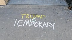 Sidewalk Chalk NYC: Trump is Temporary (@iamsdawson) Tags: donald trump streetchalk street photography pavement donaldtrump vandalism new york city nyc jerseycity jersey antitrump graphic road cement chalk activist activism protest resist theresistance