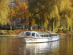 Amsterdam Canal Boat (Gilli8888) Tags: amsterdam holland netherlands canalboat trees tourboats windows canal