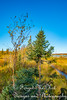 IMG_0271 (Forget_me_not49) Tags: alaska alaskan wasilla lakes lucillelake boardwalk pier sunrise waterways