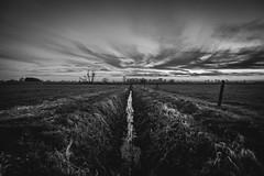 Dutch landscape B&W (dominicbruins) Tags: sunset outdoor sky sun clouds nikon holland netherlands megchelen blackwh blackandwhite skyline landscape sigma sigma1020