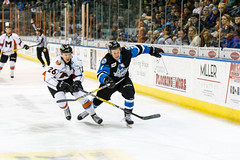 "Missouri Mavericks vs. Wichita Thunder, January 6, 2017, Silverstein Eye Centers Arena, Independence, Missouri.  Photo: John Howe / Howe Creative Photography • <a style=""font-size:0.8em;"" href=""http://www.flickr.com/photos/134016632@N02/32191515636/"" target=""_blank"">View on Flickr</a>"