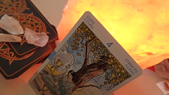 4 of Cups (anikadowsett) Tags: crystal tarot warmth wicca
