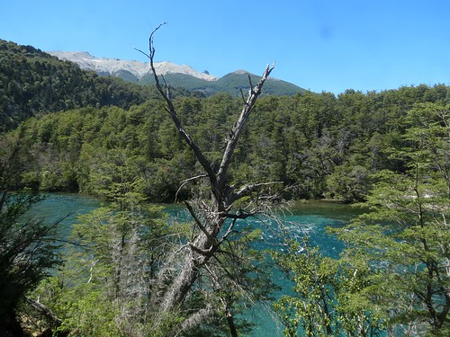 Back at Lago Verde