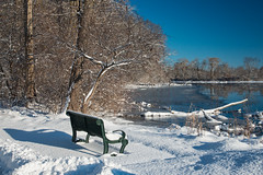 Rockford Snow Day - Peppler Park (MichellePhotos2) Tags: peppler park pepplerpark rockford michigan snow winter sun day nikon d800e nikond800 tree trees bench river rogue rogueriver 50mm