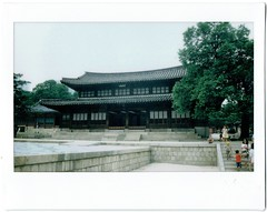 Palace with Babies (lahelalane) Tags: film babies fuji wide palace korea moms seoul instax
