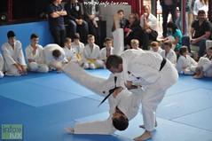 Judo-habay066