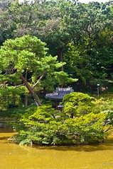 Secret Garden II (Miquel Llagostera) Tags: contrast temple korea seoul vacaciones templo seul vactions