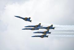 DSC_9236 (Riad Twal) Tags: station florida air hornet naval blueangels nas pensacola fa18
