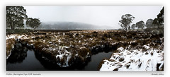 Snowing at Polblu (liipgloss) Tags: winter panorama snow ice creek forest canon landscape pano australia nsw snowing scone 2470l barringtontops 7dii brendaashley polblu
