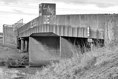 18943 (benbobjr) Tags: uk greatbritain bridge england english creek river stream unitedkingdom britain path gb british brook footpath peterborough cambridgeshire pathway bridleway publicfootpath rivernene eastofengland stanground fengate seconddrove fengatefieldbridge