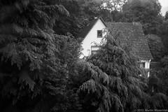 Shelter (martinwozenilek) Tags: wood blackandwhite bw house film analog zeiss forest 35mm kodak iso400 bessa trix shelter voigtlnder biogon352zm