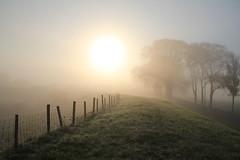 landschap (landscape), Purmer, Netherlands (CBP fotografie) Tags: mist holland netherlands fog landscape nederland landschap noordholland northholland purmer