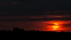Sunset (Botterbloom) Tags: sunset germany deutschland sonnenuntergang panasonic schleswigholstein lumixgx7 lumixgvario14140mmf35