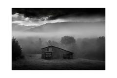Barn In Fog At Dawn II (shutterclick3x) Tags: blackandwhite bw fog barn landscape countryside farm backroads frankloose