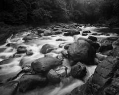 Puente Roto (Eddie La Mole) Tags: elyunquenationalforest puenteroto mameyesriver blackandwhite film monochrome shanghaigp3 4x5 5x4 largeformat graflexcrowngraphic fujinon75swd