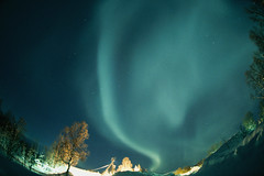 CB030628 (arcticpics) Tags: aurora auroraborealis distortion ethereal europe fisheyelens light night nobody norway outdoors photographicstudies scandinavia sky snow trees tromscounty tromso wideangle