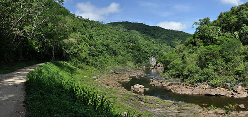 San Ignacio - Turning Jungle River Panorama