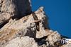 """""""Vol en terre natale"""" - Gemapi, jeune femelle gypaète barbu née au Bargy en 2016, Haute-Savoie. (Raphaël Grinevald • Photographe) Tags: rgphotographe raphaelgrinevald reflex rhônealpes rapace nikon sigma d800 150600 contemporary gypaète barbu gypaetus barbatus bartgeier lammergeier landscape montagne massif mountains bargy bearded vulture vautour vol oiseau bird gemapi 2016 hautesavoie savoie haute lpo asters vcf"""