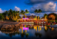 Dusk at Snook's, Key Largo, Florida. (Jos Buurmans) Tags: bar bluehour citylandscape commercialbuildings evening fl florida keylargo nature northamerica palm palmtree palmtrees restaurant seafront seaside smallgroupoftrees southeast trees twilight us usa unitedstates unitedstatesofamerica waterfront cityscape
