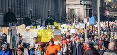 2017.02.04 No Muslim Ban 2, Washington, DC USA 00500