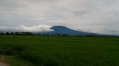 IMG_20170102_151227 (vndycahconx) Tags: gununglawu mountain landscape view sragen karanganyar wonogiri natural ricefield sawah