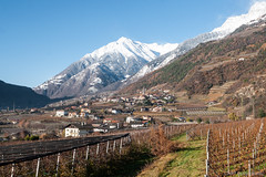 Put all the colours in your dreams (OR_U) Tags: 2017 oru italy merano landscape village mountain winter snow wineyard valley