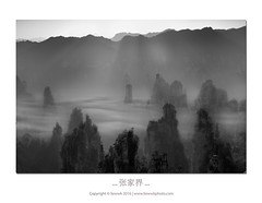 。。。 张家界 。。。 (liewwk - www.liewwkphoto.com) Tags: 张家界 zhangjiajie hunan 湖南 中国 china liewwk liewwknature liewwkphotohunters avatar 云海 photohunters ray malaysia photographer black white