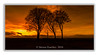 NYE Sunset (Steven Peachey) Tags: landscape sunset canon6d canon stevenpeachey lightroom sevensisters copthill barrow sky cloud manfrotto raw exposure ef24105mmf4l leefilters lee09gnd 6stopndfilter