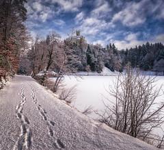 Winter in Trakoscan (Croosterpix) Tags: winter snow castle lake frozen trakoscan trakošćan croatia hrvatska nikond610 nikkor1835