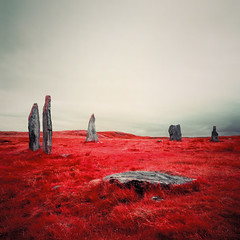 Fallen Stone at Callanish (Mark Rowell) Tags: infrared ir eir expired callanish isleoflewis scotland hasselblad 903 swc kodak 6x6 120 mediumformat film