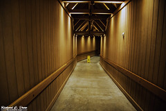 Crater Lake - 2015 (Rick Drew - 15 million views!) Tags: crater lake mt winter 2015 canon5d mkiii hallway snow tunnel montana yellow gold concrete beams