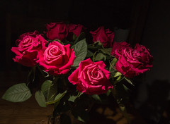 Roses (gchurch44) Tags: elements roses red rose bunch languageofflowers