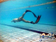 """02 febbraio 2017 - Prove sub & Freediving... • <a style=""""font-size:0.8em;"""" href=""""http://www.flickr.com/photos/138167729@N03/32782890595/"""" target=""""_blank"""">View on Flickr</a>"""
