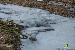 Obernai-23 (valdu67photographie) Tags: 2017 alsace arbre basrhin blanc d7200 eau faune forêt glace hiver montagne nature nikon nikond7200 obernai paysage valdu67photographie vignes ville