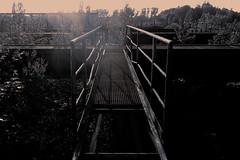 Ironworks (Arthur Koek) Tags: catwalk storagebunkers industrial industry industriekultur thyssen steel ironworks landscapepark landschaftspark ruhrpott ruhrgebiet alienskin exposure7 wetplate duisburg duisburgnord nrw nordrheinwestfalen northrhinewestphalia deutschland germany