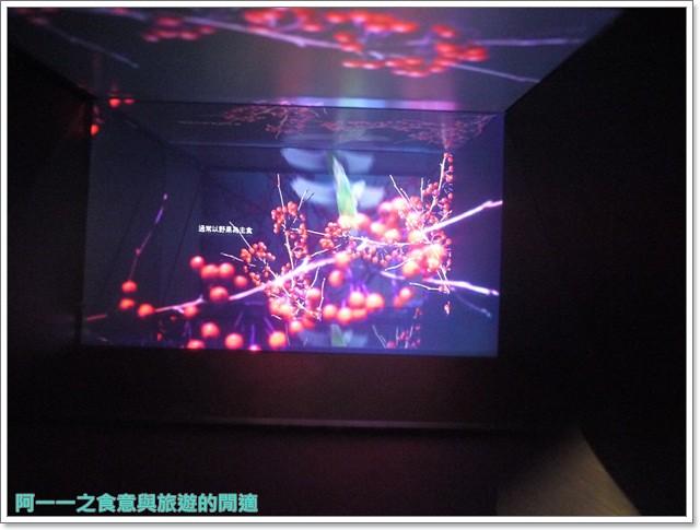 台東成功旅遊景點都歷遊客中心親子寓教於樂阿一一image034