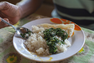 A typical meal of rice, cabbage and cassava, One' Oneabu, Solomon Islands. Photo by Filip Milovac.