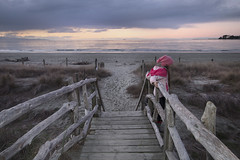 Sunset Fence Lean (Jessica Shirley) Tags: ocean winter sunset seascape cold beach nature girl hat clouds canon reeds landscape photography coast sand warm child purple jessica jacket shore shirley 70d