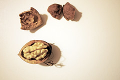 Open walnut on white (Rosmarie Wirz) Tags: food white walnut flickrmarketplace