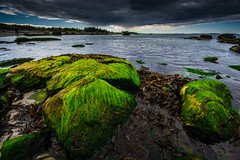 Greenhouse effect (arild aarnes) Tags: sea seascape green beach norway clouds stavanger rocks greenhouseeffect solastranden
